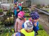 Návštěva zahradnictví